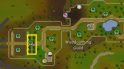 OSRS F2P&P2P 1-99 Woodcutting Guide | OSRSGolds